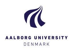 Aalborg University (AAU)