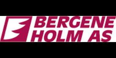 Bergene Holm