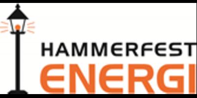Hammerfest Energi Nett AS