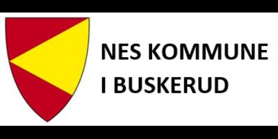 Nes kommune i Buskerud