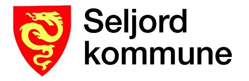 Seljord kommune